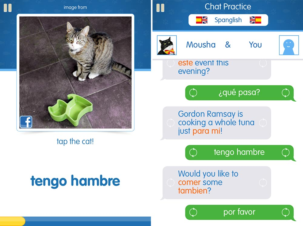 Cat Spanish sounds crazy, but it's actually a really fun way to learn Spanish!
