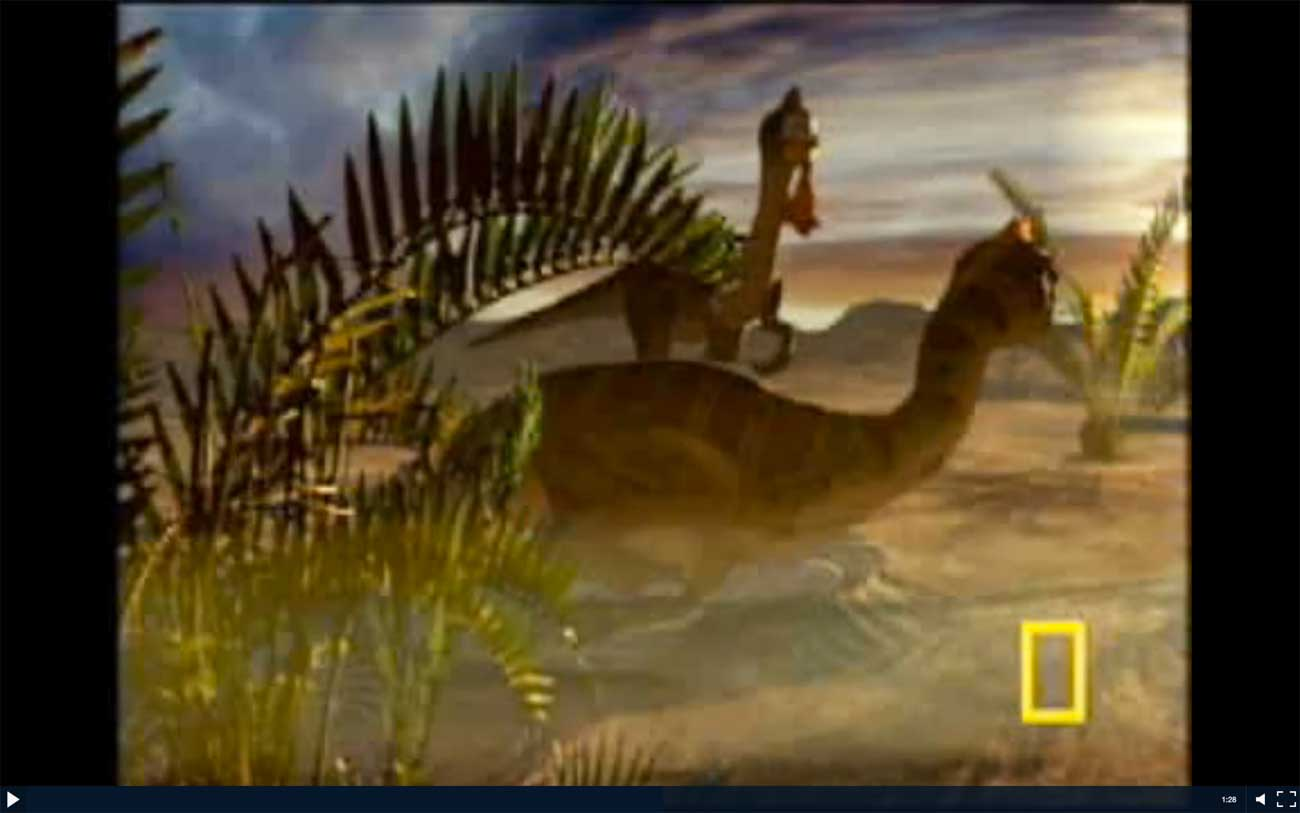"National Geographic's ""Dinosaurs 101"" gives a short and sweet overview of the topic."