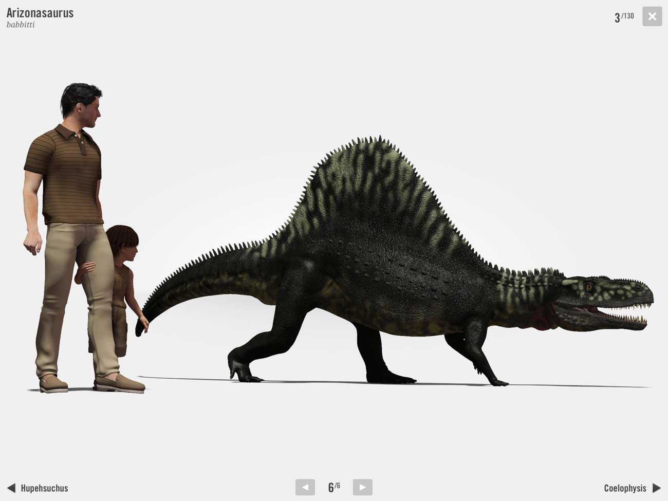 The size comparisons will help give your kid an understanding of each dinosaur's actual size.