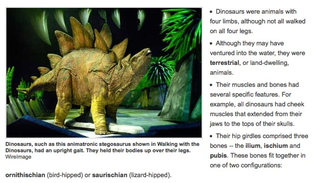How Dinosaurs Work is an excellent primer for any would-be dinosaur enthusiast.